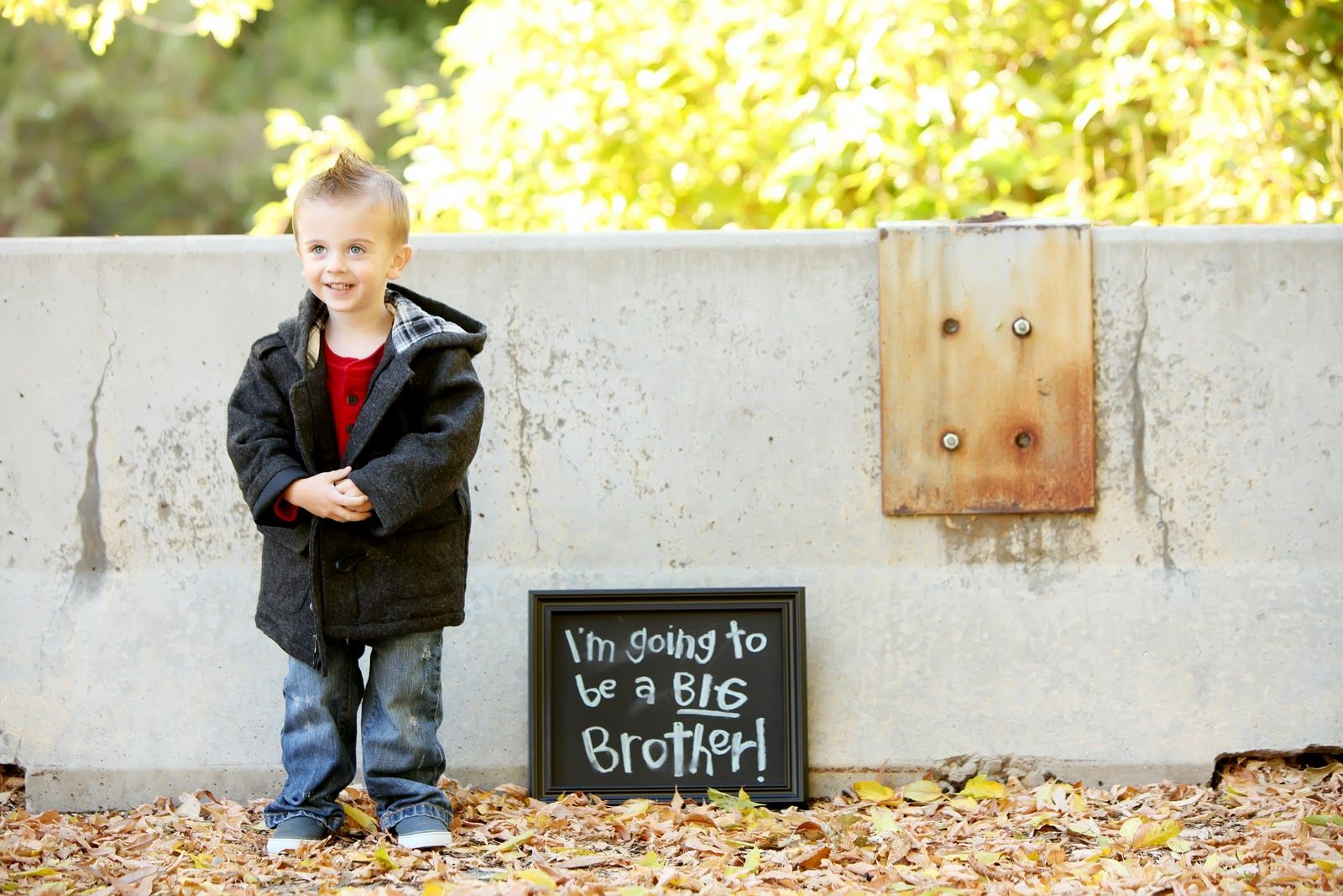 17 Best images about Creative Pregnancy Announcements Ideas on – Big Brother Birth Announcement Ideas