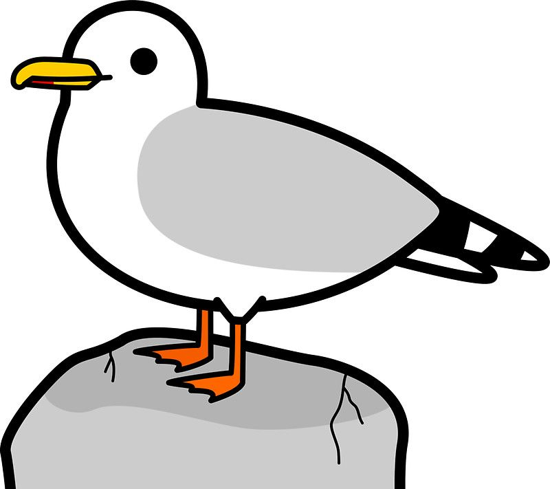 cartoon seagull google search jack pinterest rh pinterest com seagull cartoon name seagull cartoon characters