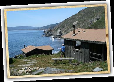 Santa Cruz Events · Cabin Campgrounds California | Cabin Camping In  California   Steep Ravine   Big Basin   The