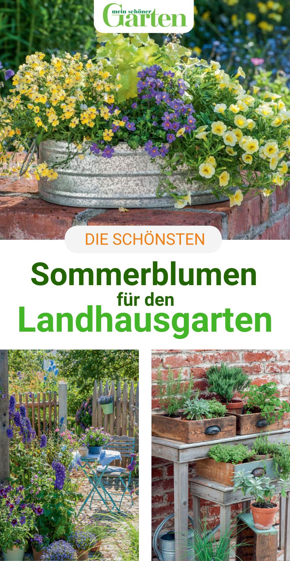 Naturliche Blutenpracht Sommerblumen Fur Den Landhausgarten In 2020 Sommerblumen Indoor Garten Garten Und Outdoor