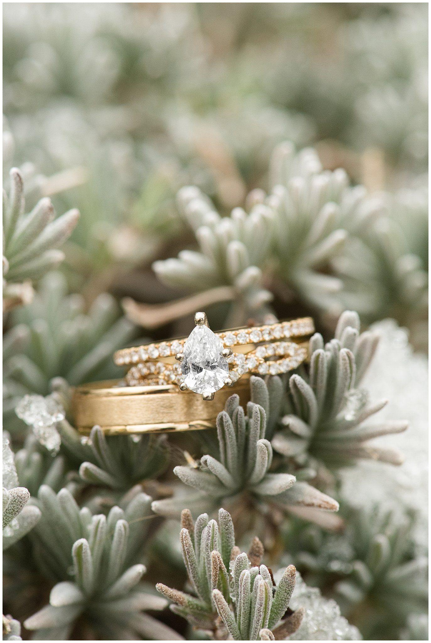 Ogden Temple Winter Wedding Cool wedding rings, Utah