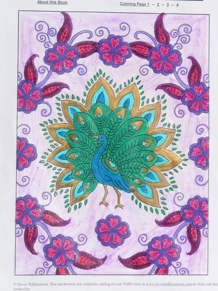 Melody R Under 12 Division From Creative Haven Mehndi Designs Coloring Book Traditional