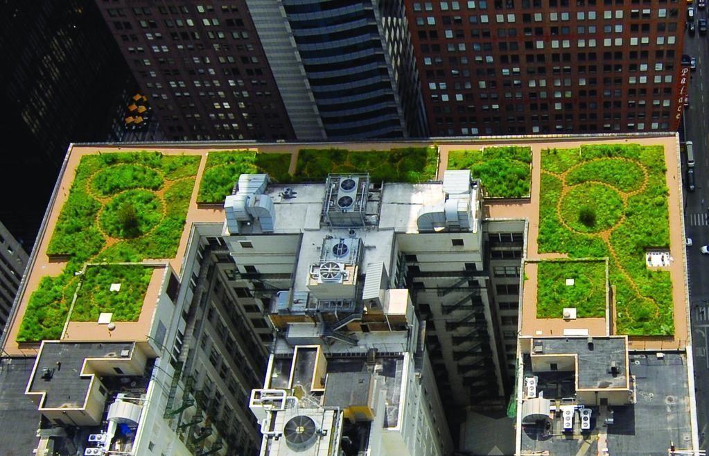 Rooftop Garden In Chicago Chicago Garden Rooftop Rooftopgardenbuilding Chicago Exciting Room Layout I In 2020 Green Roof Green Roof Garden Rooftop Garden