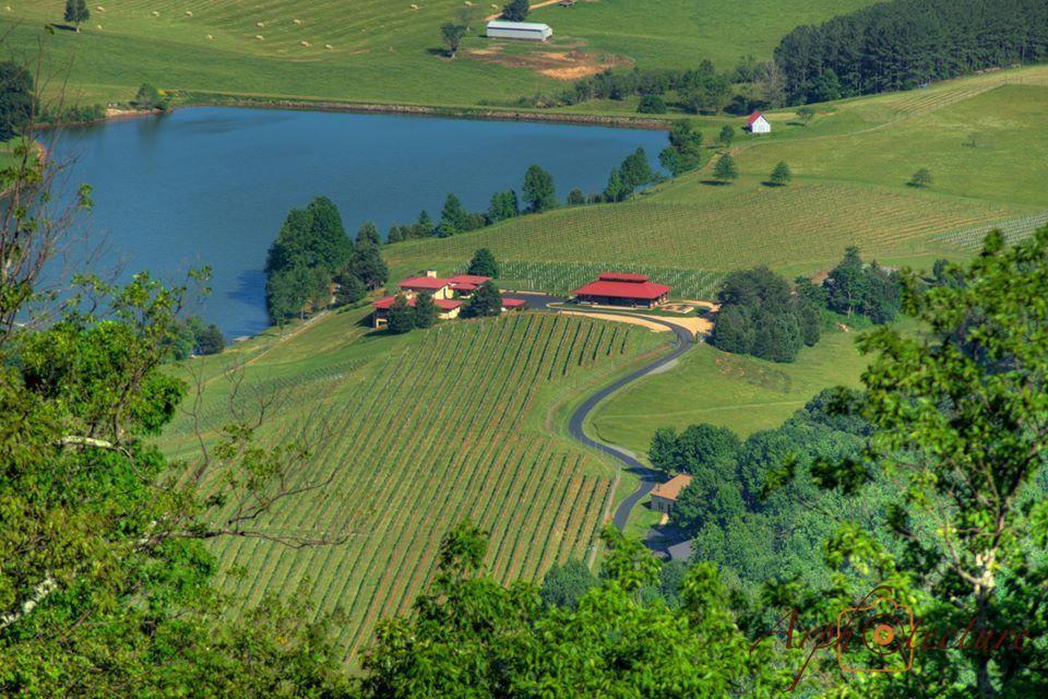 BaroloWine Wine vacation, Virginia wine country