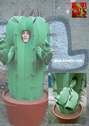 Cactus Costume with tail. I don\'t understand it either. | Cactus ...