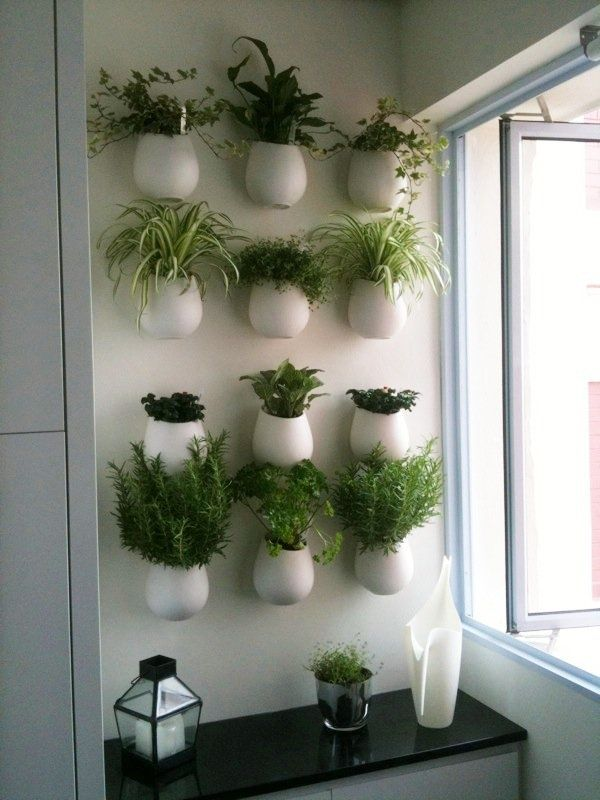 Kitchen Herb Wall For Me Probably In Brick Pots