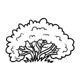 Resultado De Imagen Para Dibujos De Arbustos Faciles Coloring Pages Colorful Pictures Color