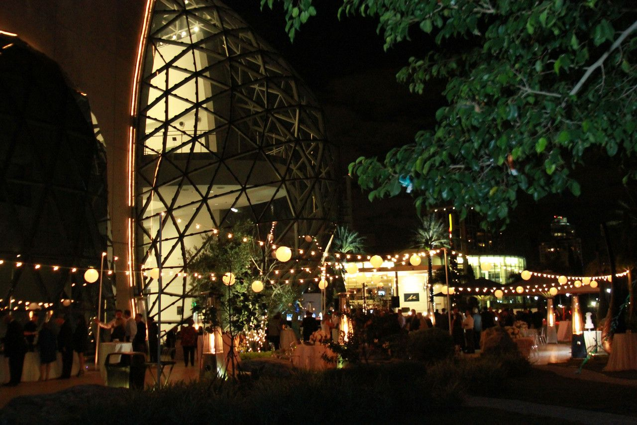 Salvador Dali Museum Wedding Lights By Tampa Inc