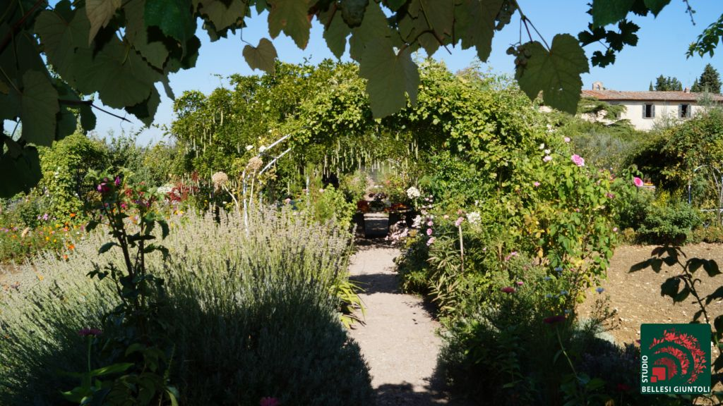 shaded paths vegetables in the garden castel ruggero