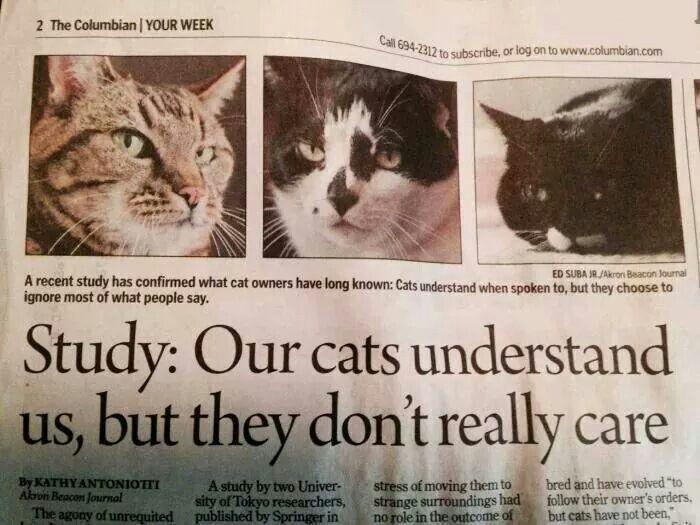 Makes Sense.