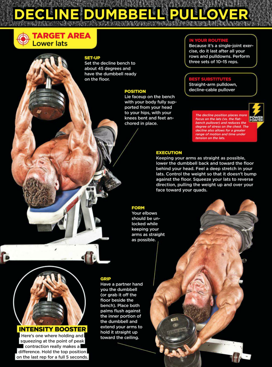 Decline Dumbell Pullover | dumbell workout | Pinterest | Workout ...