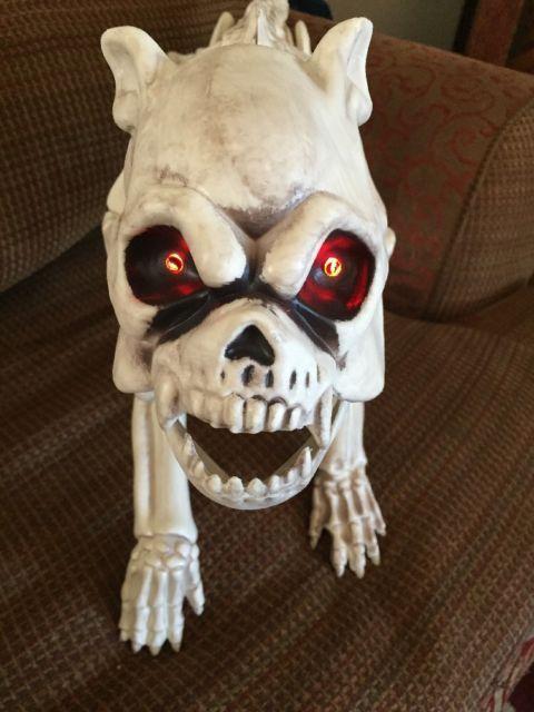 Skeleton Dog Halloween Decoration Light Up Eyes With Timed On Off