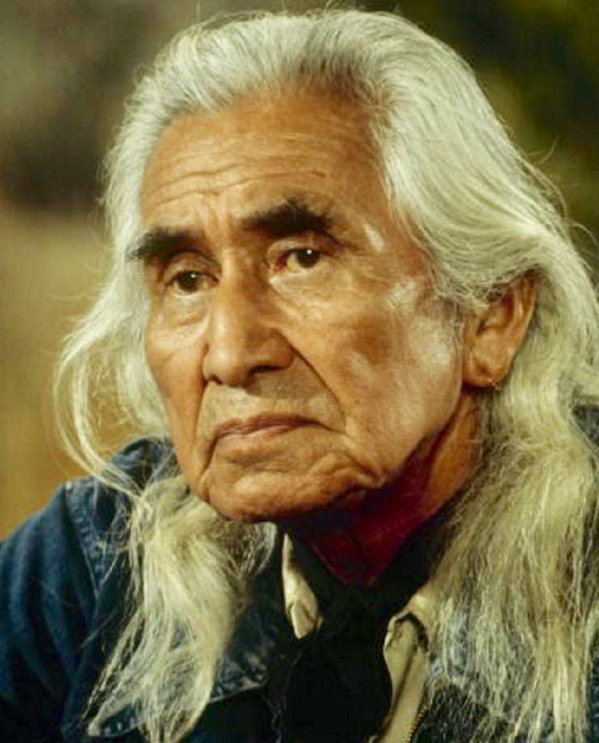 Chief dan native american men native american