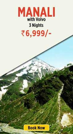 Apart from Ticketing (both domestic and international), we excel into designing tailor made tour packages for domestic, inbound and outbound tourists. Worldwide Hotel bookings, visa and passport, travel insurance, local & international transfers are also included in our services. Alipuria Travels is a one-stop enterprise that offers the complete range of travel related services. http://booking.alipuriatravels.com