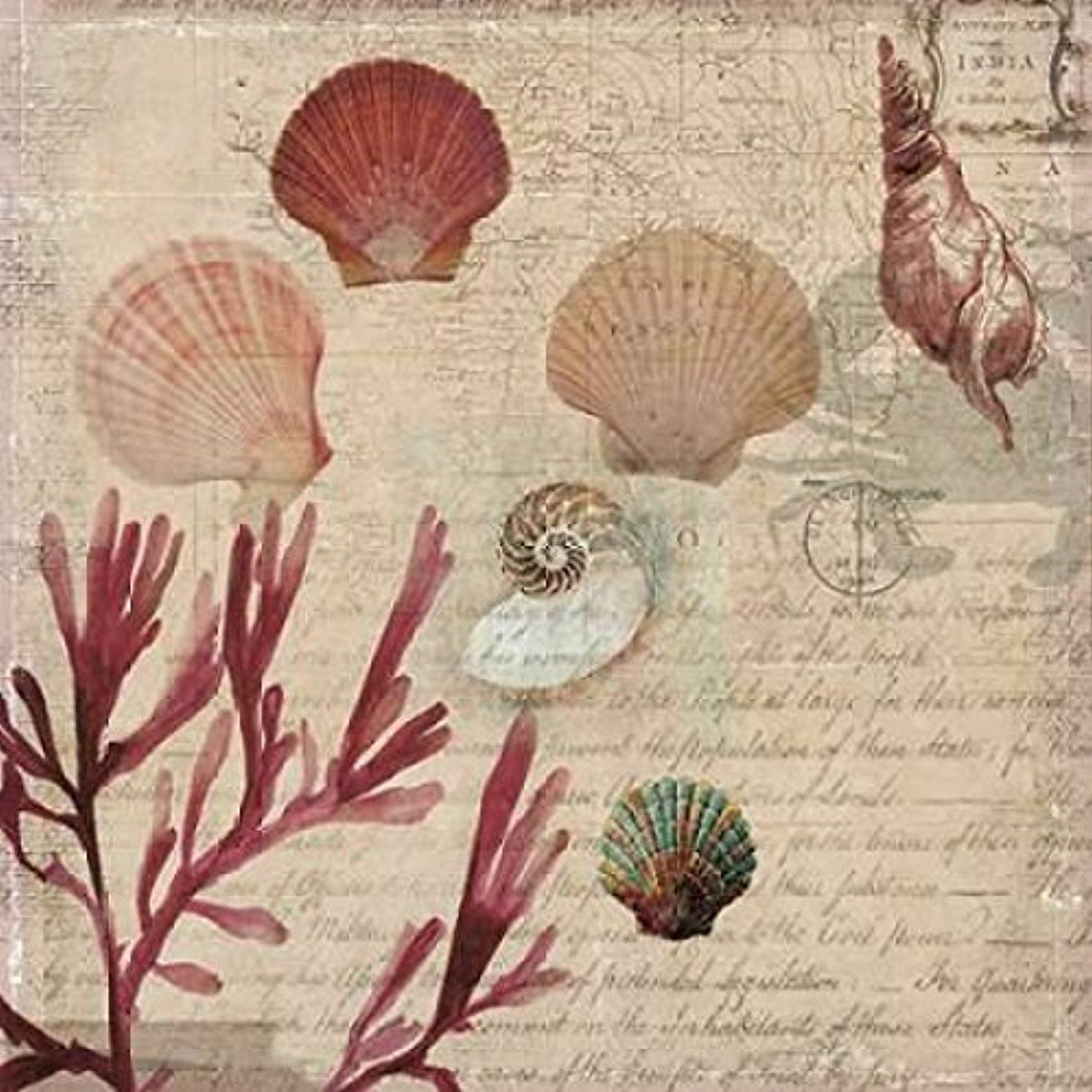 The Winning Coral II Poster Print by Aimee Wilson (12 x 12) -- Awesome products selected by Anna Churchill