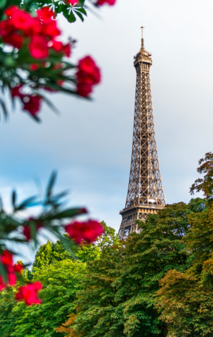All you need to plan your trip to Paris: top attractions, best restaurants and hotels, itinerary recommendations and cheapest flight from your closest airport.