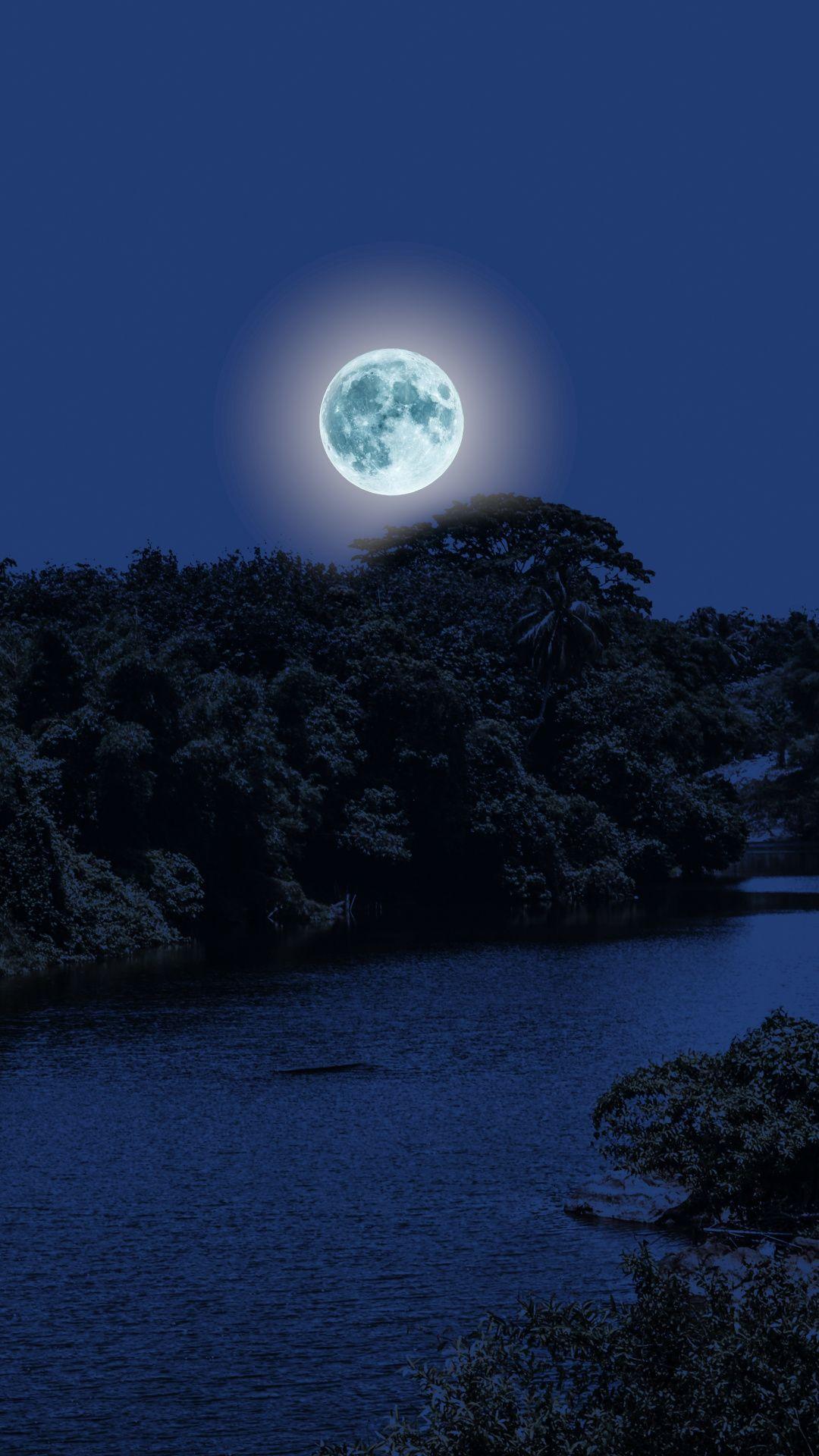 Moon Light Night River Trees Nature Wallpaper Good Night Image Beautiful Good Night Images Good Night Wallpaper