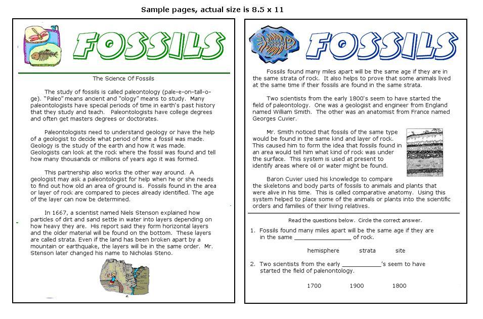 Fossil Worksheet | ABITLIKETHIS | Education | Pinterest ...