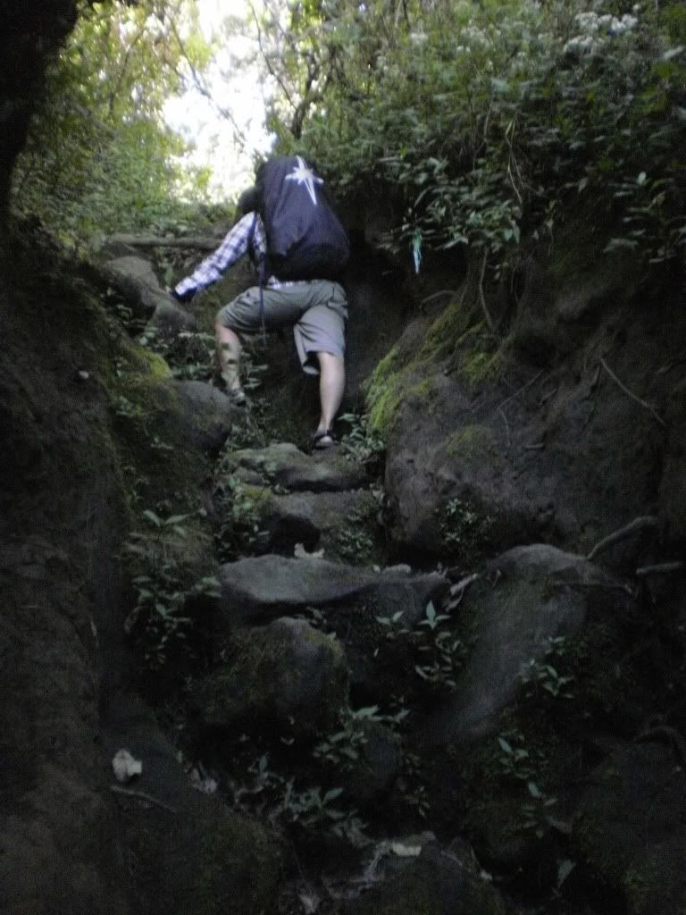 Wisbenbae Foto Foto Di Gunung Ciremai Cirebon Jawa Barat Pemandangan Foto Alam Fotografi Alam