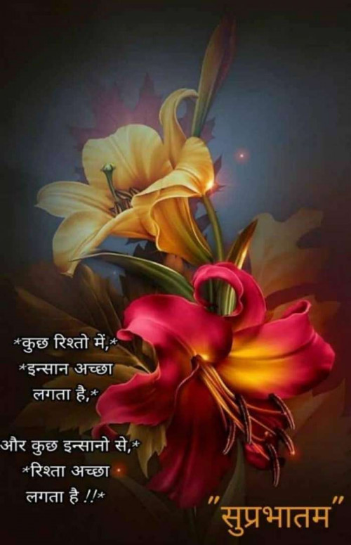 Quotes And Whatsapp Status Videos In Hindi Gujarati Marathi Floral Painting Art Wallpaper Flower Painting
