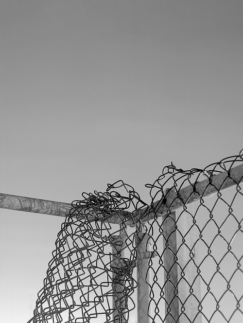 The fences are what keeps you safe. Now they are destroyed. What do you do?