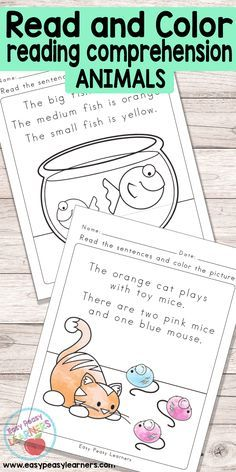 Animals Read and Color Reading Comprehension for Kindergarten and ...