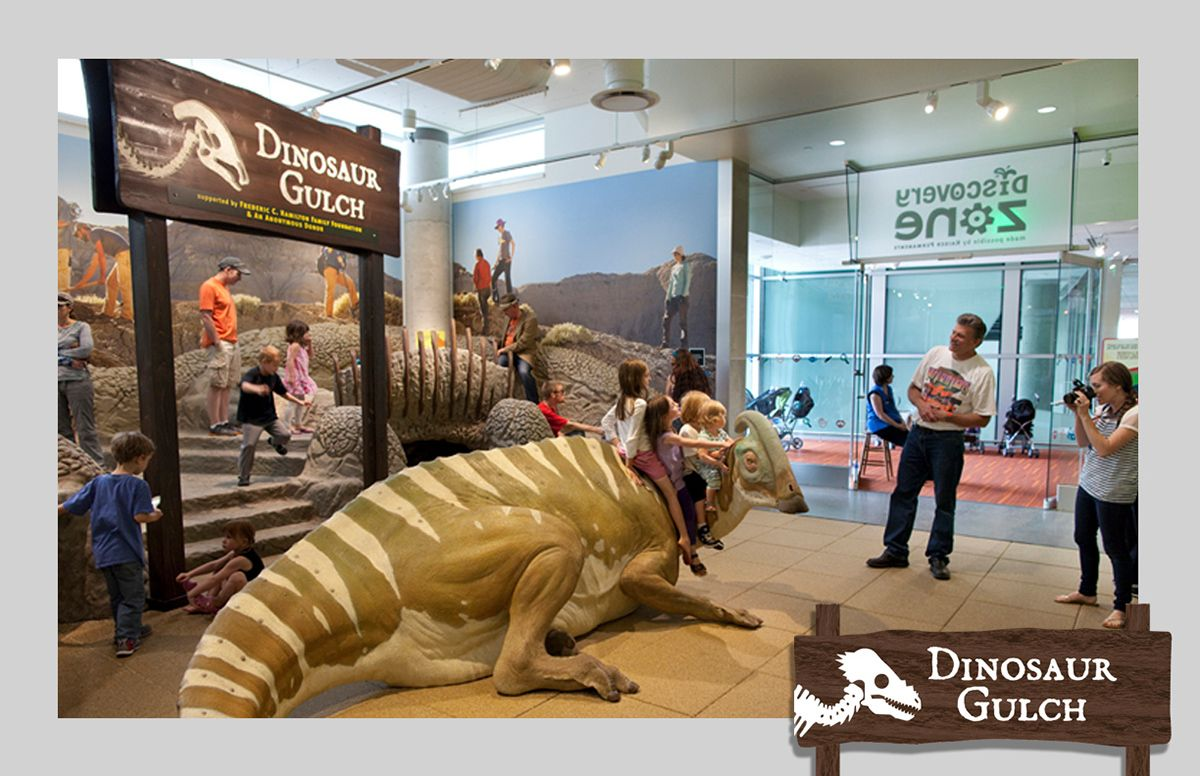 Discovery Zone on Behance | Discovery zone, Nature museum ...