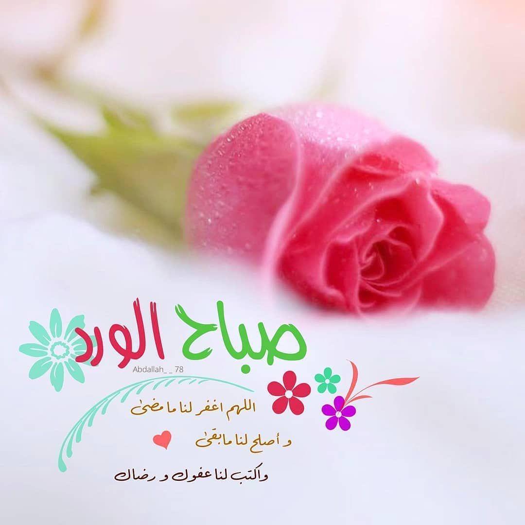 صبح و مساء On Instagram صباح الخيرات والمسرات صباح الورد صباحي Good Morning Arabic Morning Greeting Good Morning Greetings