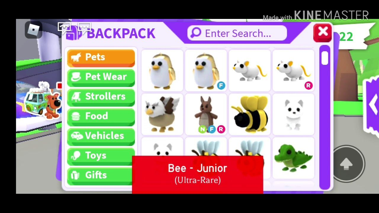 Adopt Me Giveaway In 2020 Adoption Roblox Pets