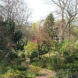 Botanischer Garten Duissern Kaiserberg In Duisburg Botanischer Garten Garten Duisburg