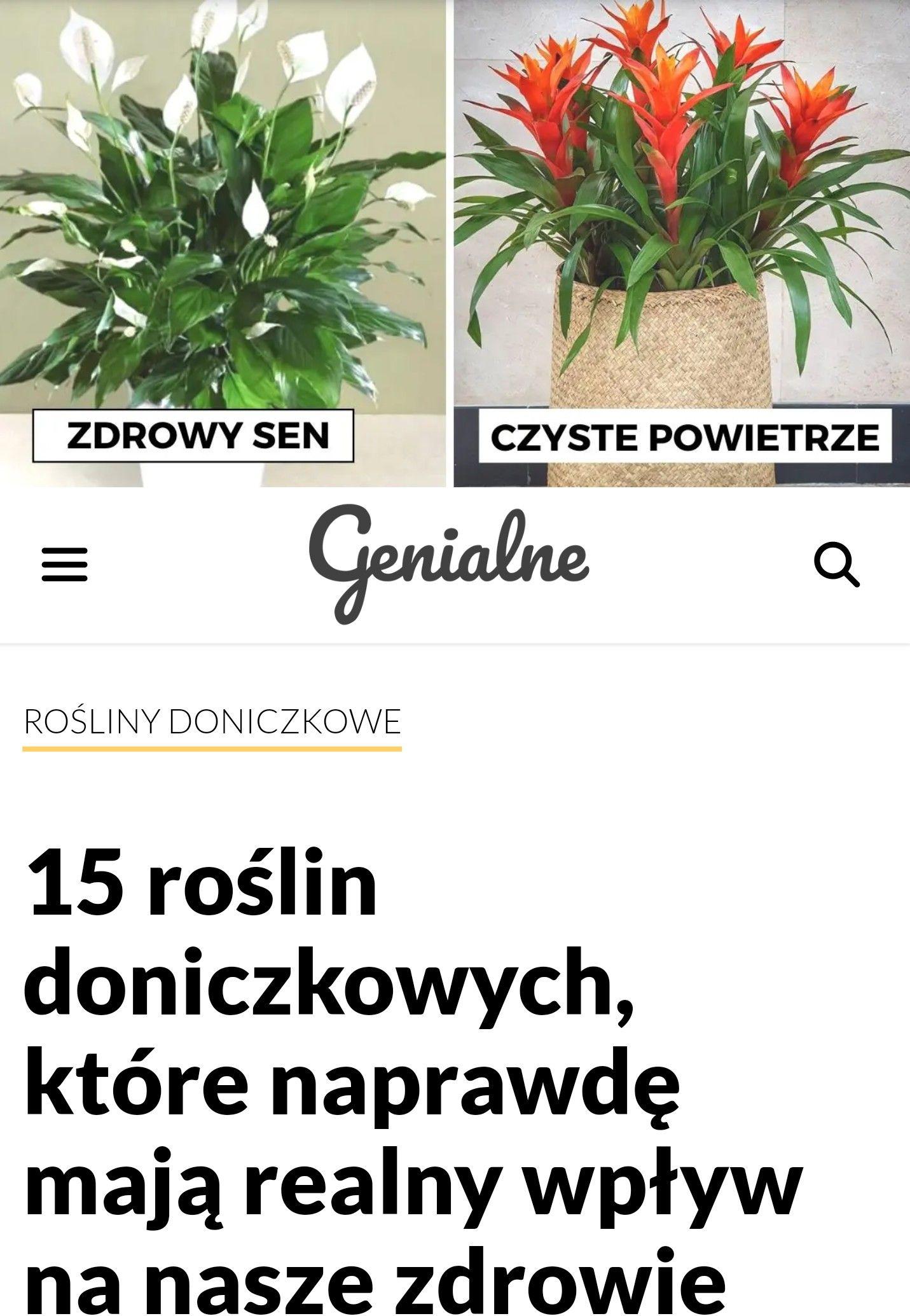 15 Roslin Dla Dobrego Zdrowia In 2020 Plants Flowers Garden