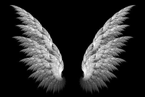 3d Black Background Wings 2212x1451 Hd Wallpaper Free Hq