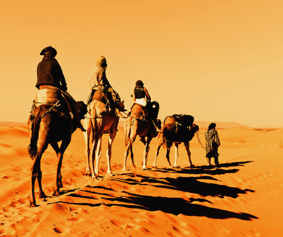 Everything You Need To Know To Book A Sahara Desert Tour Desert Tour Desert Travel Morocco Travel