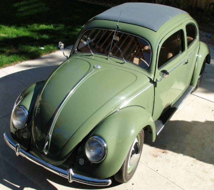 1952 Vw Beetle Split Window Volkswagen Beetle Vw Beetle Classic Volkswagen