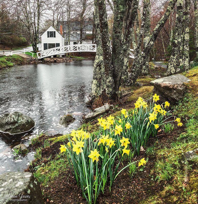 Somesville Bridge Maine | by Susan Garver Photography