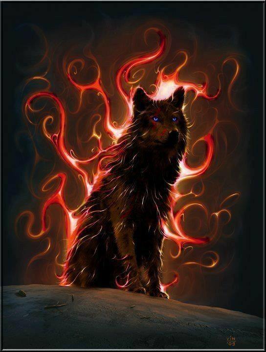My Beloved Wolf