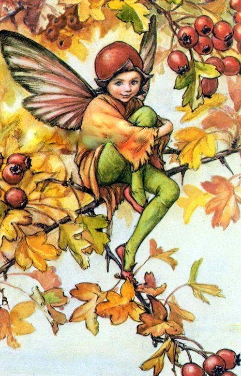 Es oto o y las hadas toman los colores que nos ofrece la for Arboles que no pierden sus hojas en otono