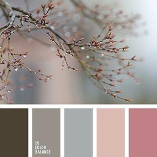 Цвета: лучшие изображения (560) Цветовые палитры