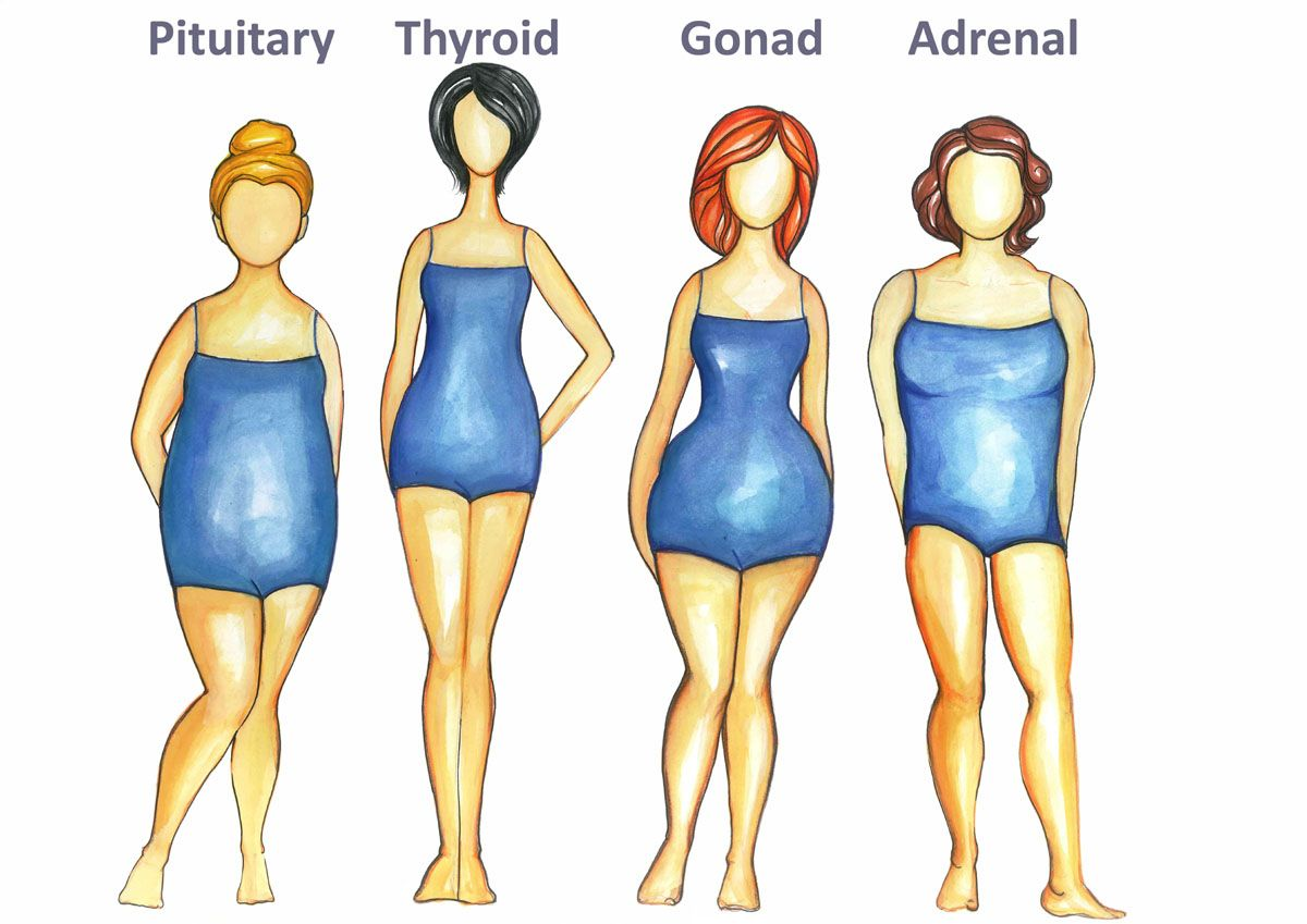 50ec3a715f The thyroid body type is one of the four female body types and the three body  types men. How to eat for your body type If you are asking