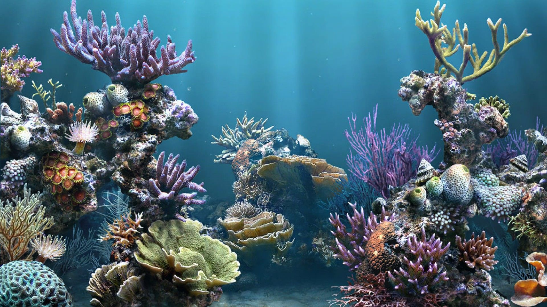 Underwater aquarium 1920 1080 textile for Seamless fish tank
