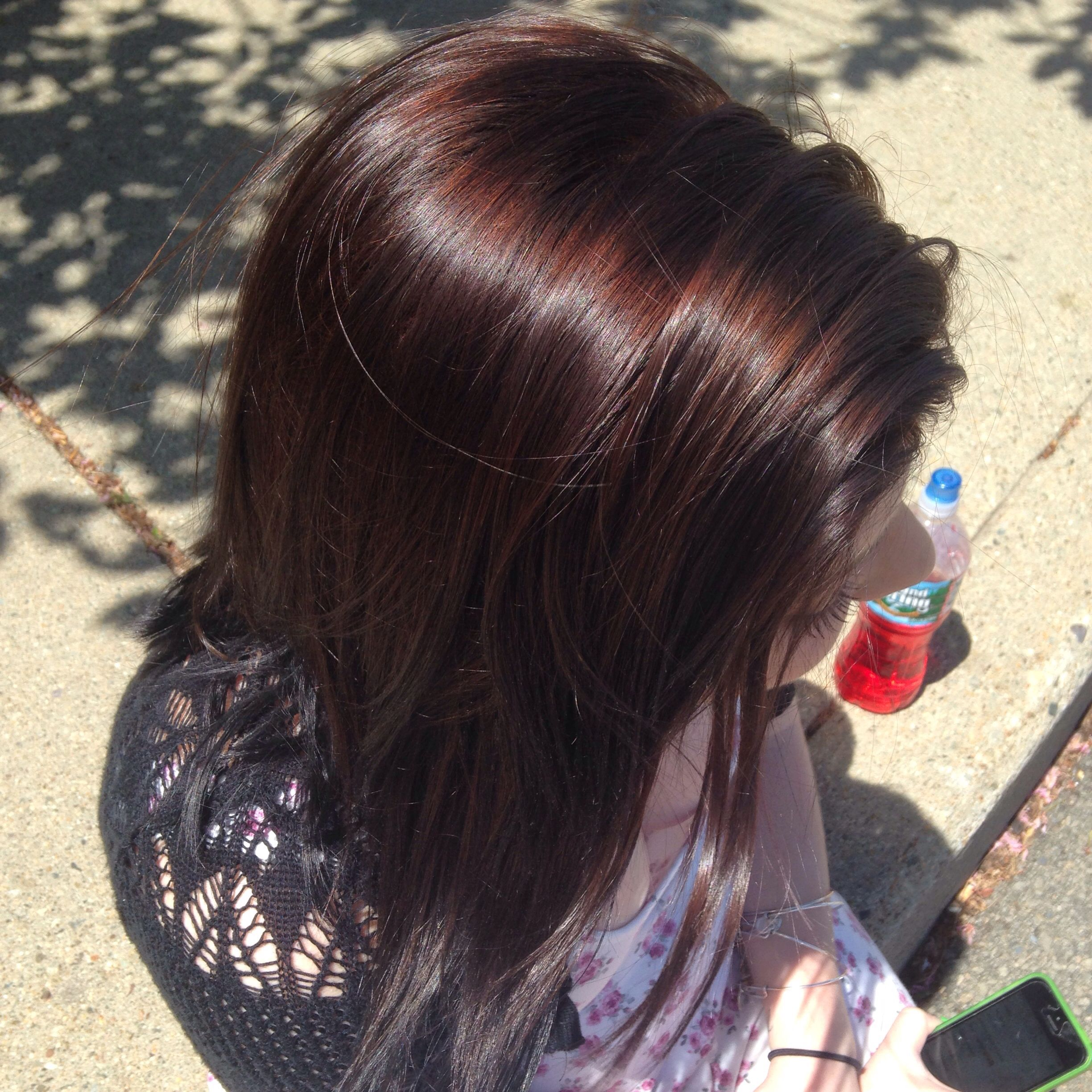 Natural Sunlight Chocolate Brown Wella Color