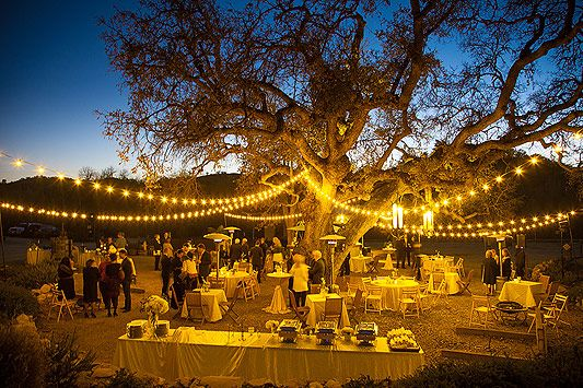 C Winery 43 Wedding Vineyard Weddings R Johnson Photography