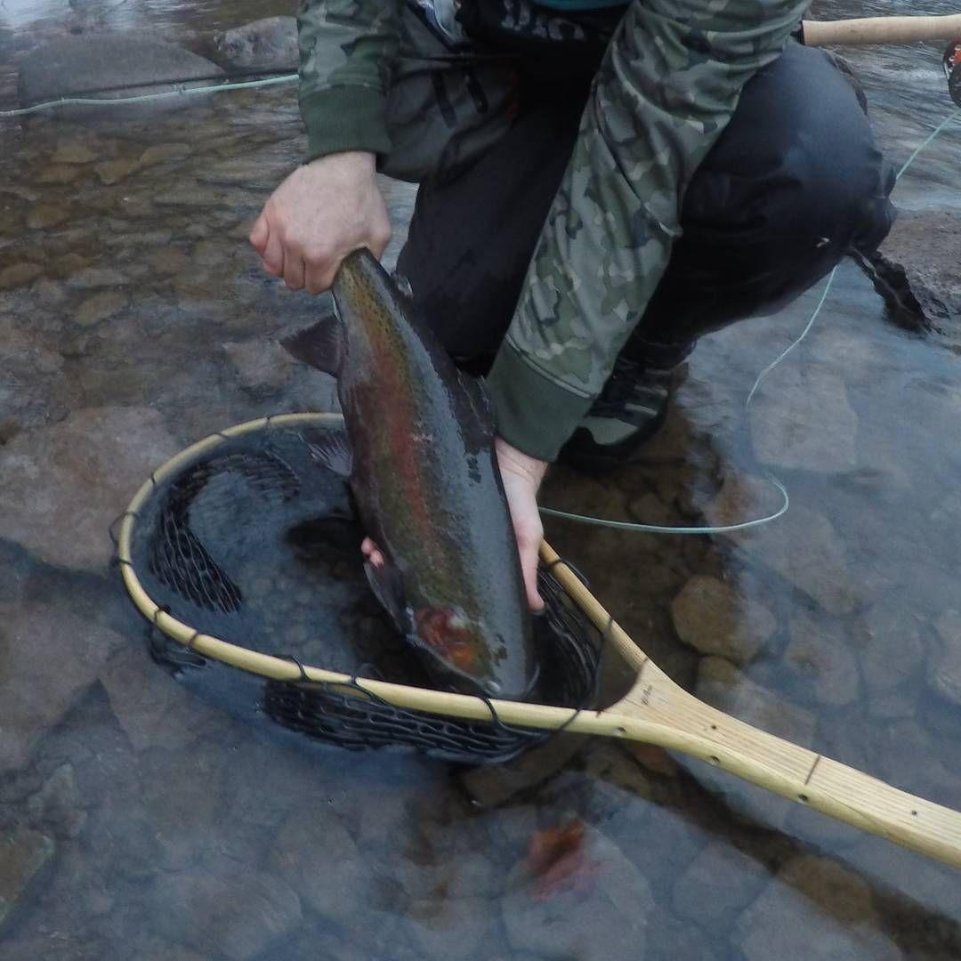 Throwback To Some Greatlakes Rusty Chrome Steelhead Flyfishing Fishing Swing Skagit Spey Opskagit Catchan Alaska Fishing Fishing Vacation Fly Fishing