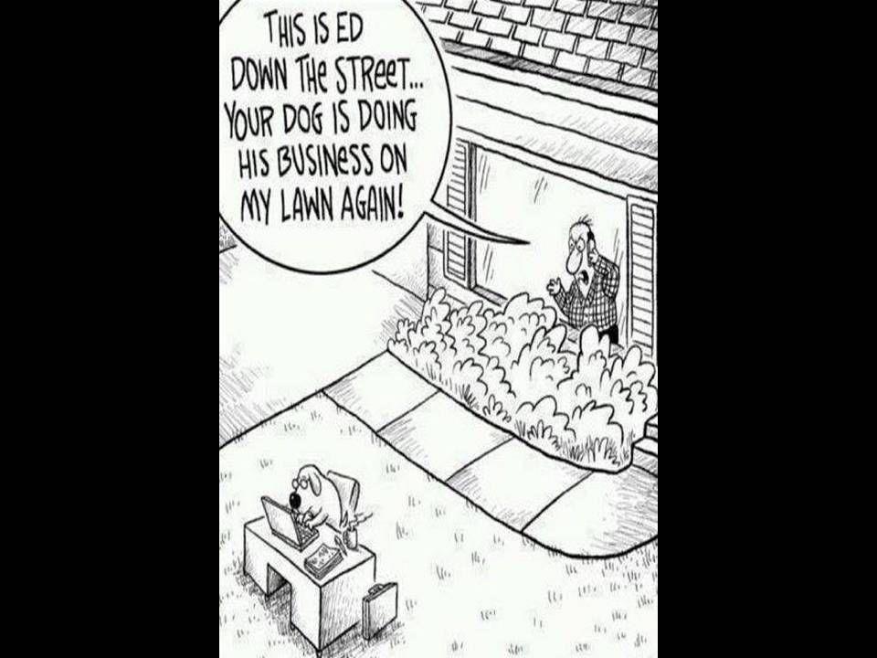 Dog Doing Business