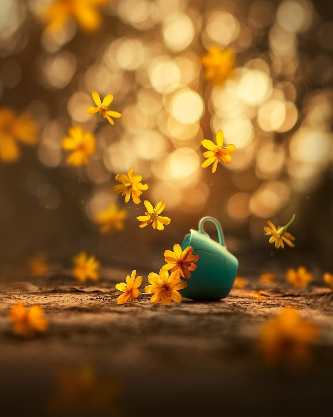 Whimsical And Dreamlike Still Life Photography By Ashraful Arefin Di 2020 Pemandangan Anime Pemandangan Fotografi Pemandangan