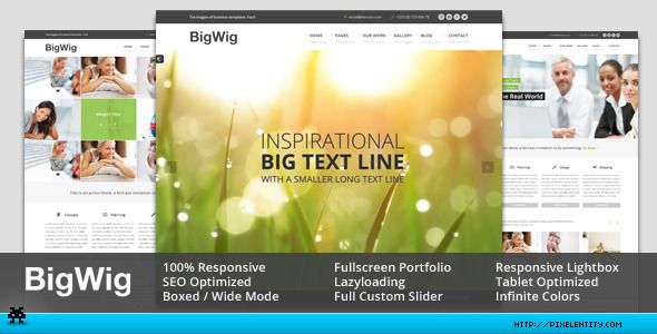 Bigwig is a fully responsive corporate html5 template suitable for bigwig modern corporate html5 template by pixelentity cheaphphosting Gallery