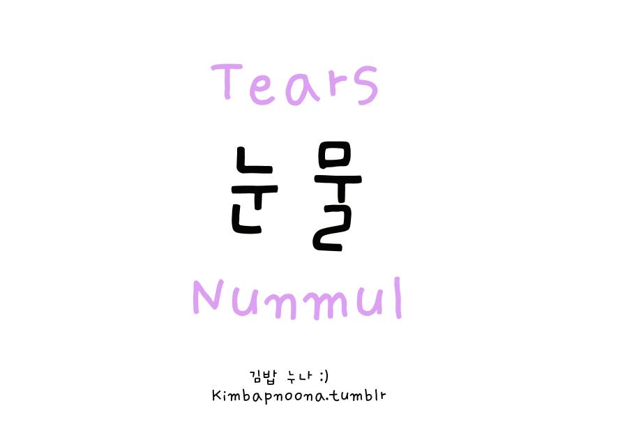 Pronun: Noon-mool • 눈 / noon ~ eyes & 물 / mool ~ water = tears