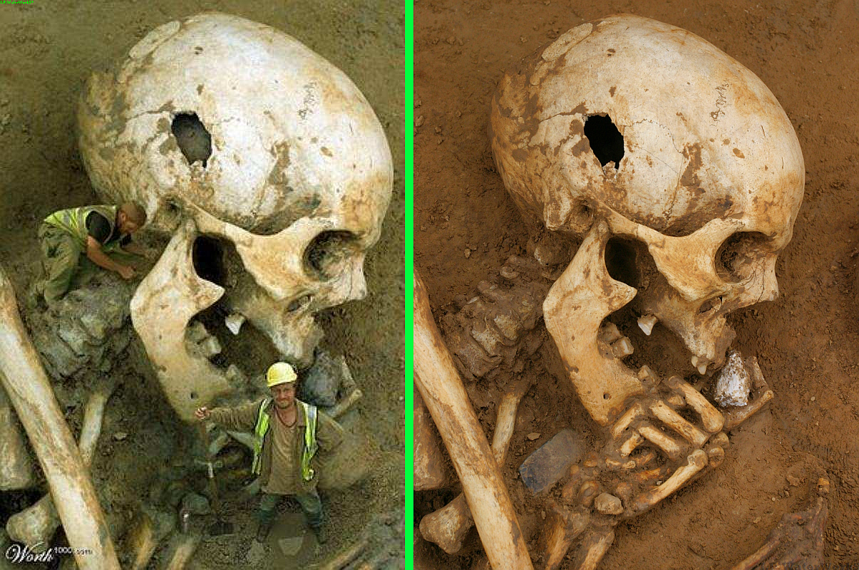 Fake Skeletons Real Giant Or