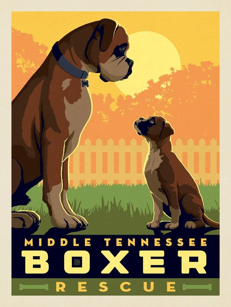 Anderson Design Group Animal Lovers 2018 Middle