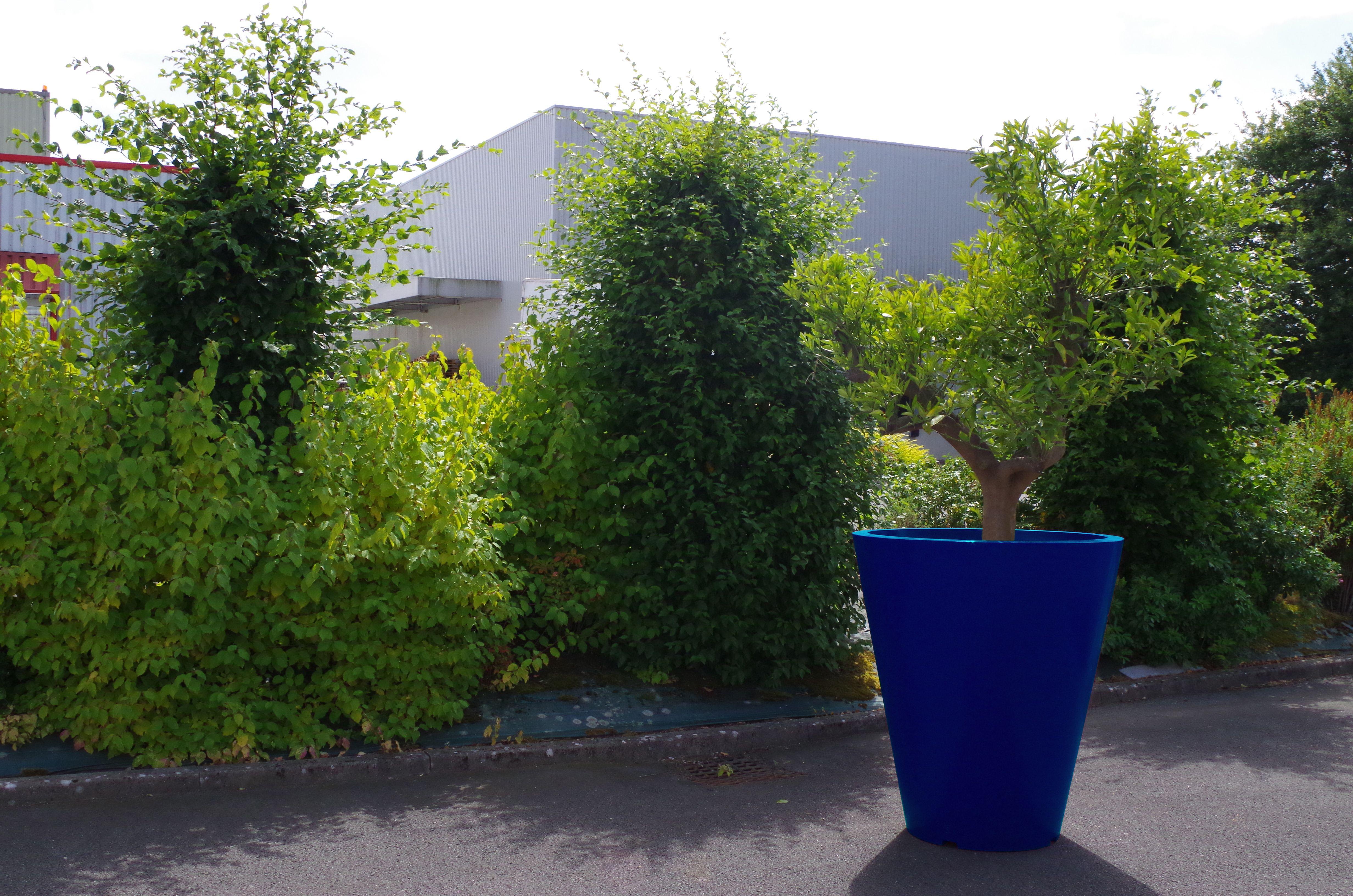 Gros Pot Fleur Plastique title} (avec images) | pot de fleurs, pot de fleur exterieur